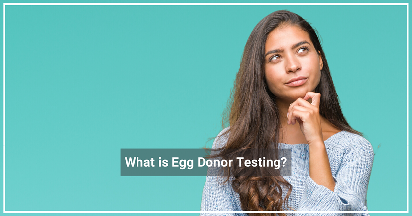 BLOG_Egg Donor Testing (1)