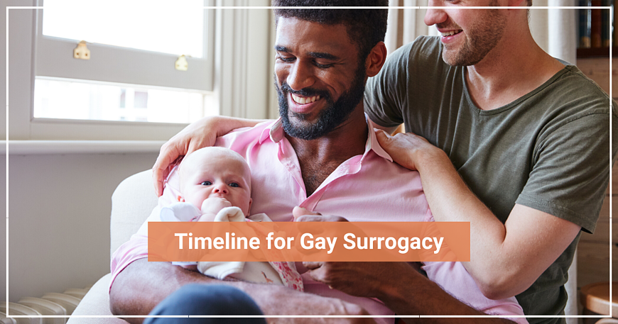 Timeline for Gay Surrogacy