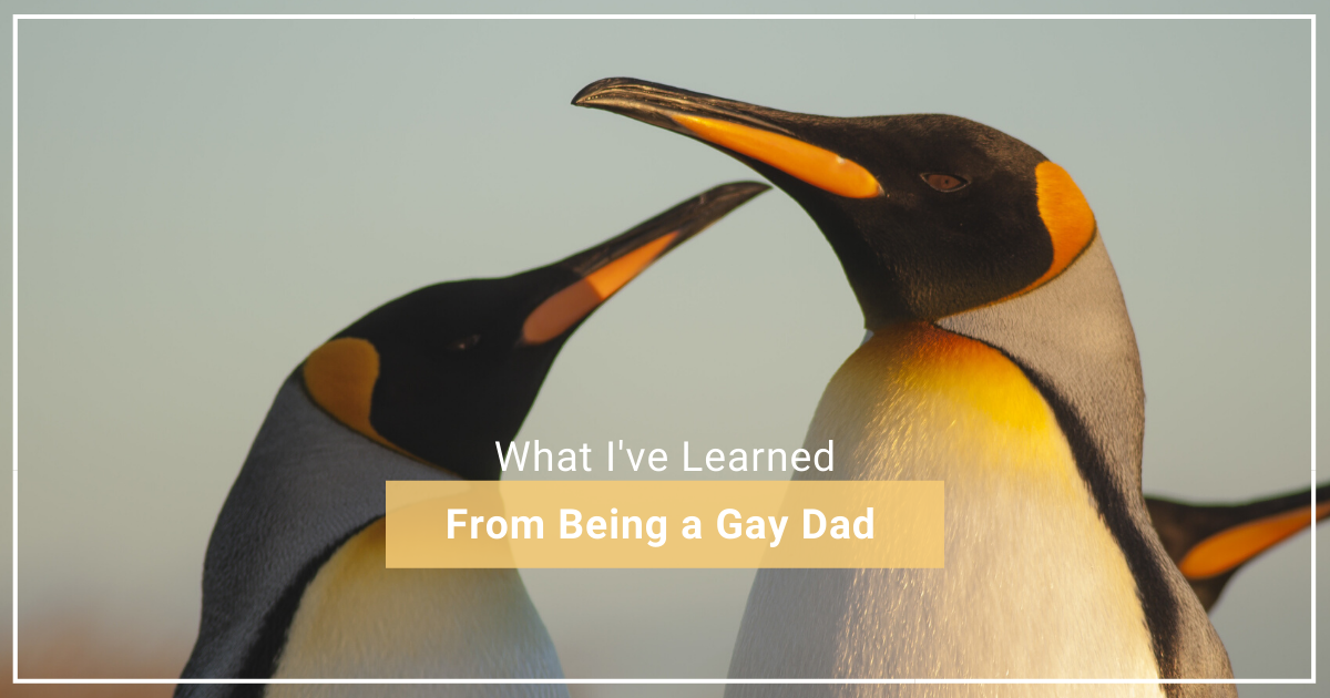 From Being a Gay Dad