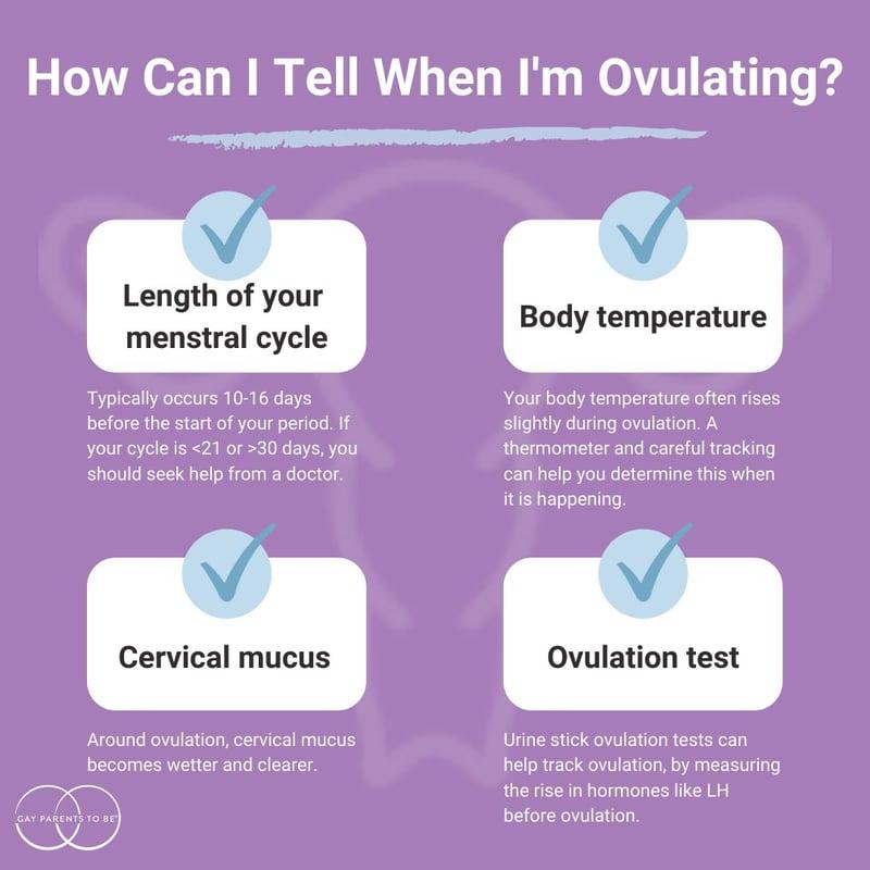 lesbian ovulation factors