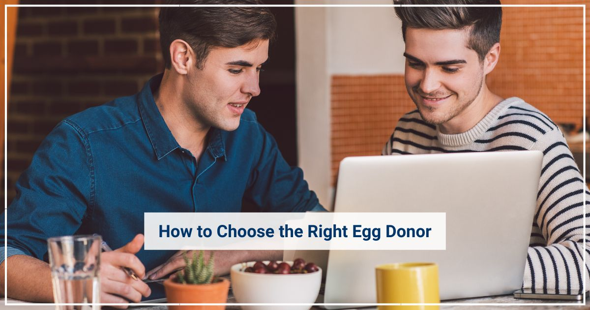 choose an egg donor gay couples