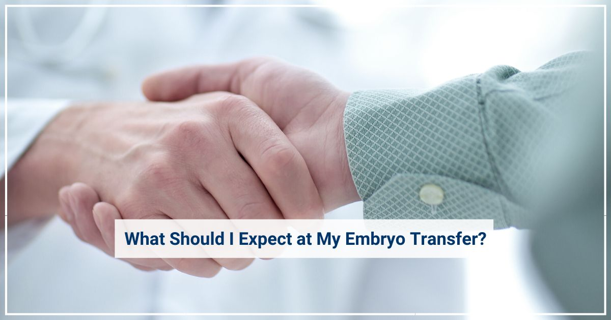 embryo transfer gay couples