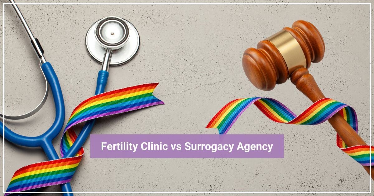 gay parents to be fertility practice v. surrogacy agency